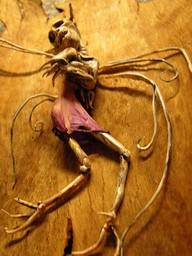 Scary Tales 2012-157414949445042352_e9rp0nbt_b.jpg