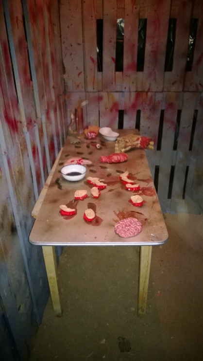 desoto asylum 2013