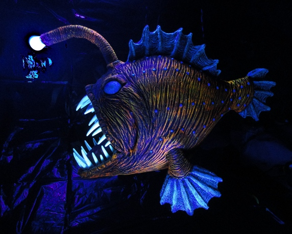 Prop showcase angus the angler fish for Angler fish size