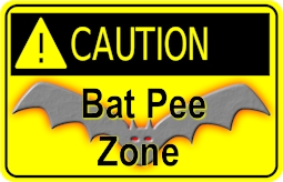 179344d1381885888-caution-bat-pee-zone-b
