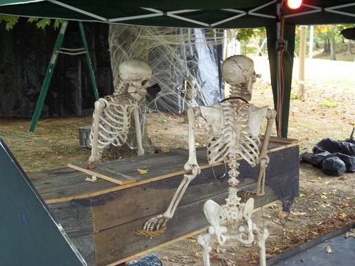 Poseable Skeletons Best Value?-bills-2012_0021.jpg