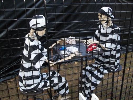 Poseable Skeletons Best Value?-bills-2012_0062.jpg