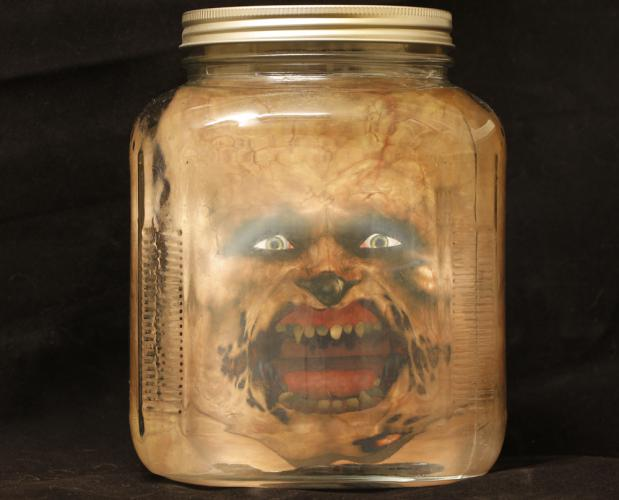 Head in a jar halloween prank jpg files for Heads in jar
