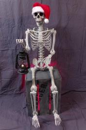 Leering Skeleton / New Mechanism Test-img_0230.jpg