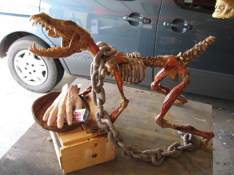 Dog skeleton-img_0567.jpg