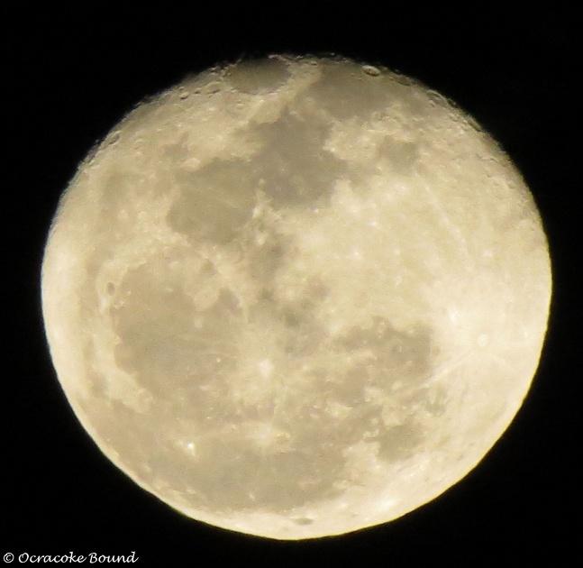 Full moon on Halloween! - Page 2