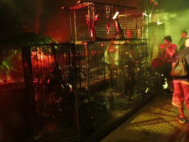 Busch Gardens Howl O Scream 2014