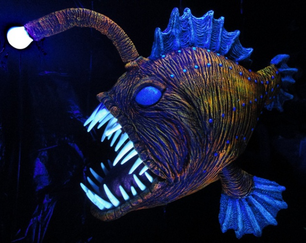 Prop showcase angus the angler fish for What is an angler fish