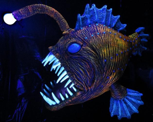 prop showcase angus the angler fish