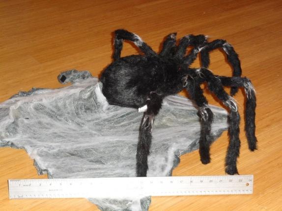 Mechanical: Spirit Halloween Jumping Spider on Sale