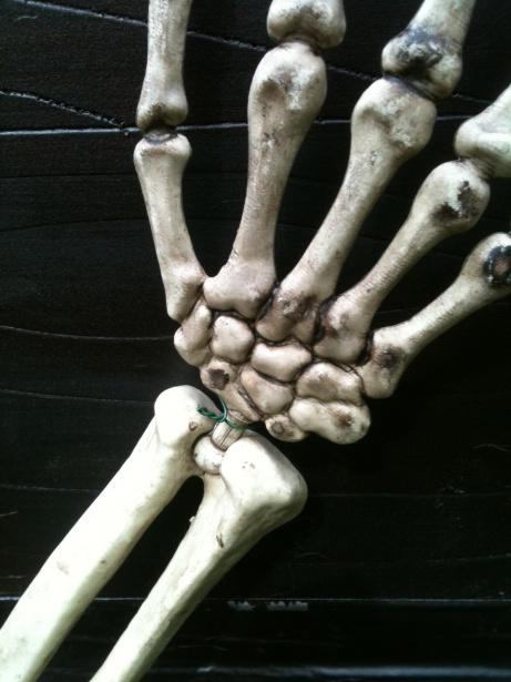 Skeletons Carrying Coffin-skelly-coffin-10.jpg