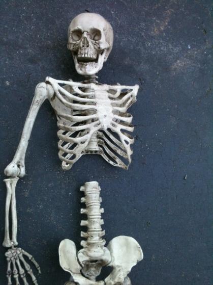 Skeletons Carrying Coffin-skelly-coffin-6.jpg