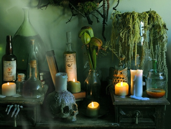 Kids' Haunted House / ...
