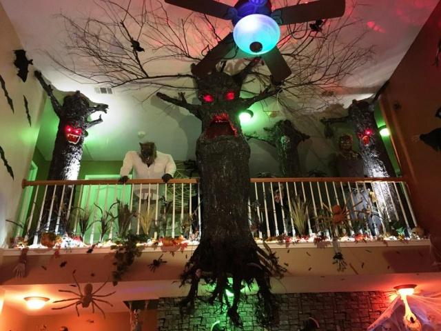 Evil Trees-wd_6bffc.jpg