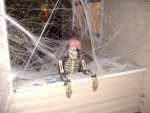 halloween-skeleton-cobwebs-Photos-o-Randomness[1].jpg