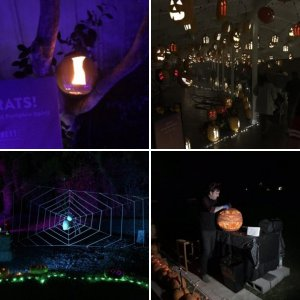 Halloween Pumpkin Nights 2018