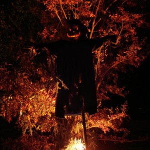 Scarecrow at night.