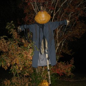 Scarecrow at night with flash.