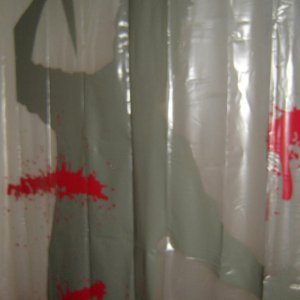 shower curtain, love the noises it makes with motion sensor