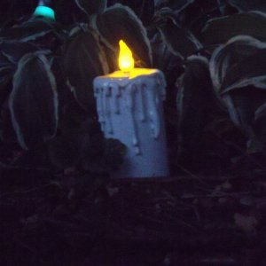 PVC LED flicker candle after sunset.