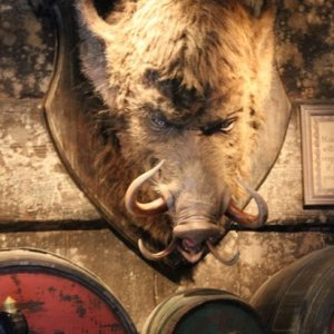 Harry Potter Boars Head