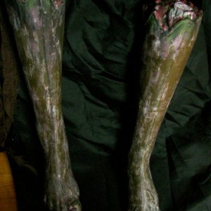 Legs after painting to match hands and face .