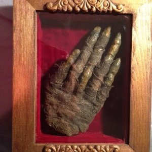 mummy hand in hand painted, decorated, and lined shadow box