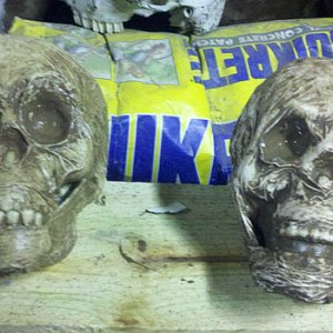 Caulk dollar store skulls. Drying.