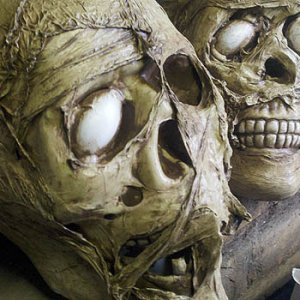 Shrink wrap skulls close up.