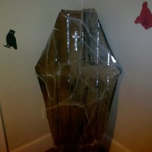 Cardboard coffin with lights