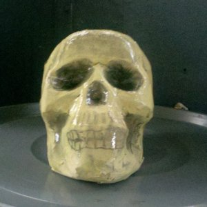 Finished paper mache skull