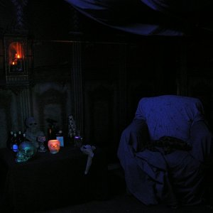 Voodoo witch doctor room with live actor (my wife).
