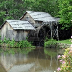 7617310 old water mill by pond with pink wildflowers