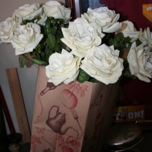 silk roses - plan to put them in a black vase and glue black spiders and bugs to them