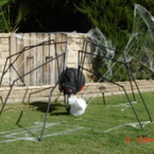 My first attempt at a giant Black Widow ('09).  We layed a bunch more webs and baby spiders before night fall...so it looked a little better.