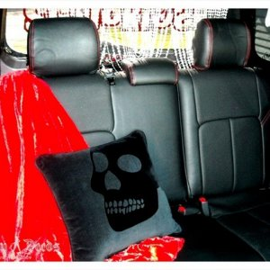 rear seat during show