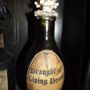 Harry Potter inspired potion bottle