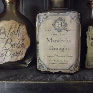 More Harry Potter inspired potion bottles