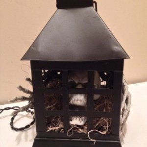 skull lantern with purple lights