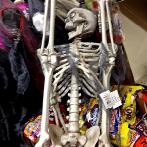 GROCERY OUTLET, 2013. Skeleton with realistic lightup eyes, 24.99