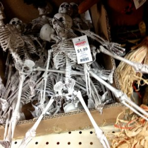 GROCERY OUTLET, 2013. Nice solid plastic skeletons like what Dollar Tree use to carry, 1.99