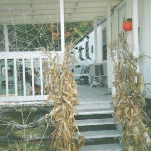 The porch, with cornstalks flanking the steps.  This pic was taken before I had installed 'Harriet', my giant inflatable spider prop.  Below, 'underne