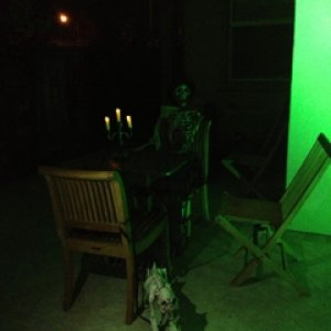 HauntedHotel2013. This was an outdoor setting. Owner George Host with his dog, Bonez, in the dining room. Too dark to see his top hat in photo.