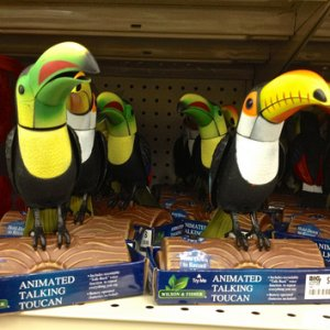 BIG LOTS, 2014. Toucans with Talkback 10 second repeat. Essentially the same thing as the black birds they had a halloween time this past year.