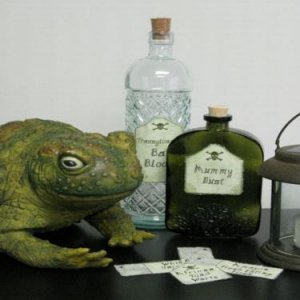 2008 - All of the gifts I sent my reapee - frog, bottles, additional labels, and a lantern.