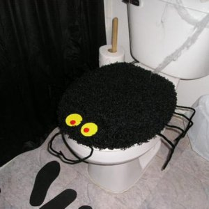 Spider toilet cover - plain black seat cover, piper cleaners and made the eyes out of poster board.  (Next time, will buy the craft button eyes and gi