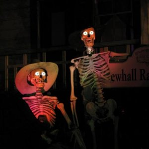 Our Talking skeletons in the Grave Yard