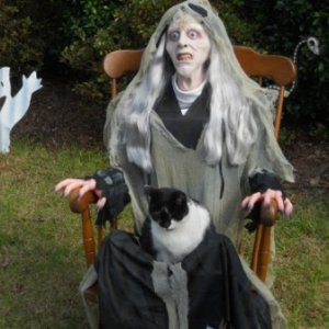 Granny and her cat. (Oreo LOVED to sit in anybody's lap-RIP.)