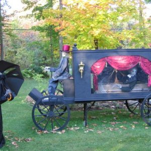the last ride.....       this is  poor widow Antoinette   mourning her dearly departed husband who's taking his last ride in this old style horse draw