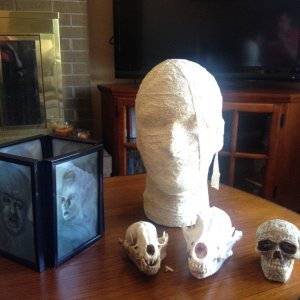 Had so much fun making the mummy head and the universal monsters lantern.  The skulls I found on ebay for my vicim who collects them!